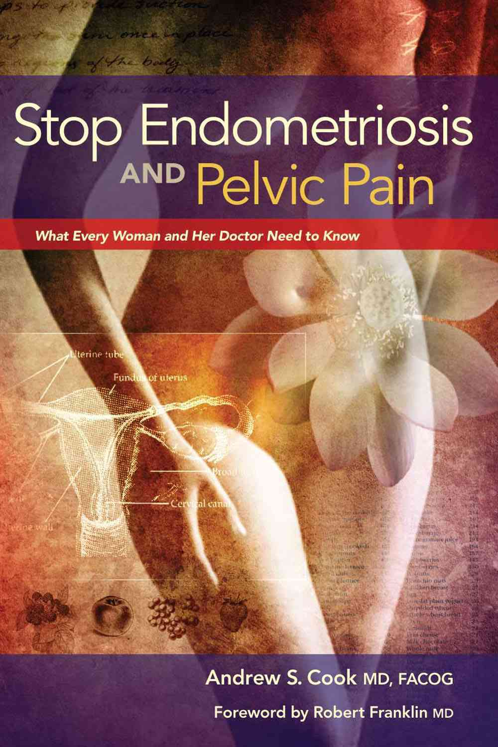 Stop Endometriosis and Pelvic Pain By Cook, Andrew S., M.d./ Franklin, Robert, M.d. (FRW)